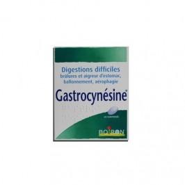 Gastrocynesine 60 comprimés