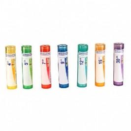 STAPHYSAGRIA Granules 4g