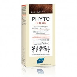 PHYTOCOLOR PERM 07.43