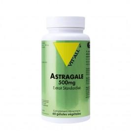 Vitall+ astragale 500mg 60 gélules